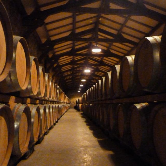 Chai à barriques - Château de Chambert